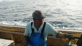 漁師 産地直送